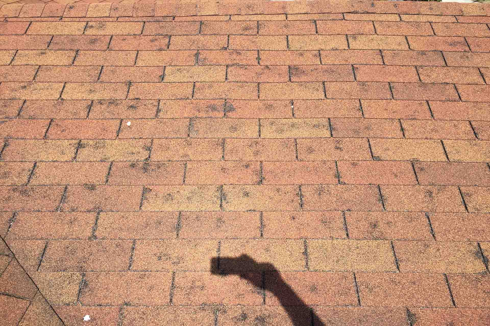 Most Common Types of Roof Damage Threatening Your Home